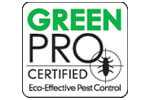 Pest Control Palm Harbor